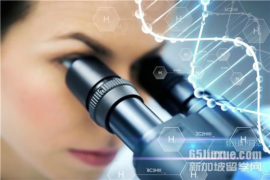新加坡哪个大学有生命科学专业