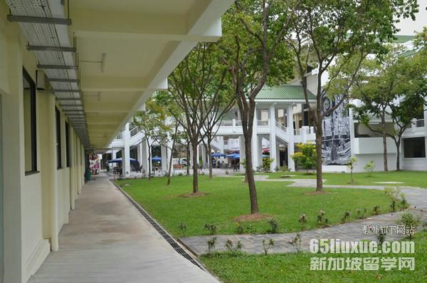 新加坡申请研究生时间安排