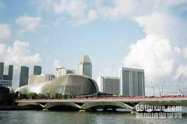 新加坡理工学院找工作