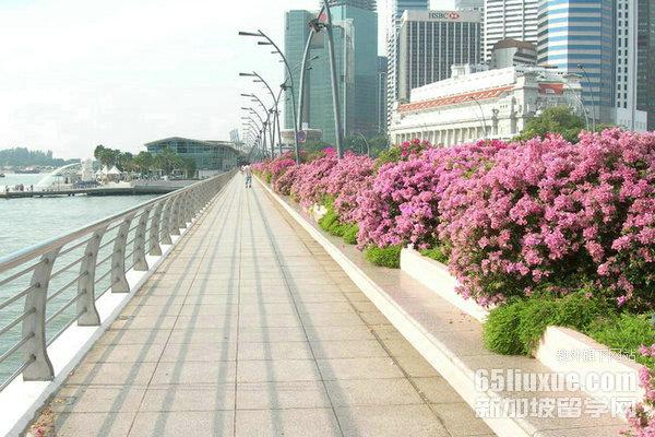 新加坡PSB学院与SIM哪个更好些