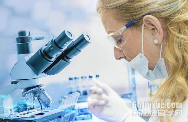 新加坡留学生物医药专业