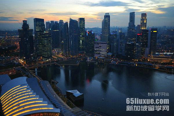 新加坡艺术硕士学位的大学