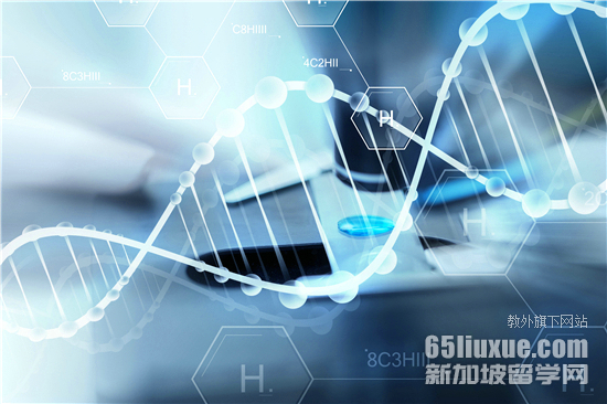 新加坡生命科学专业学校排名
