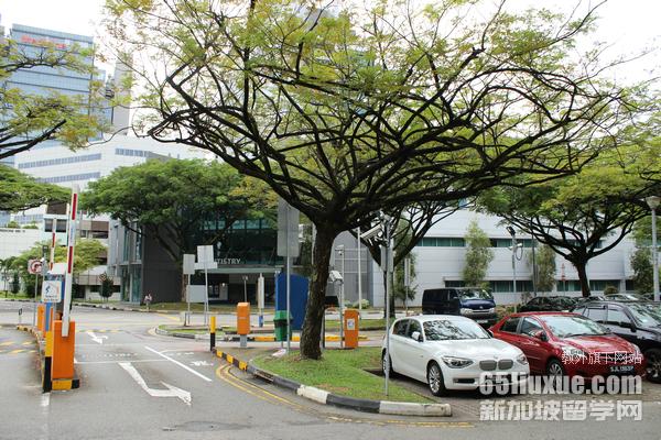 新加坡国立本科申请条件