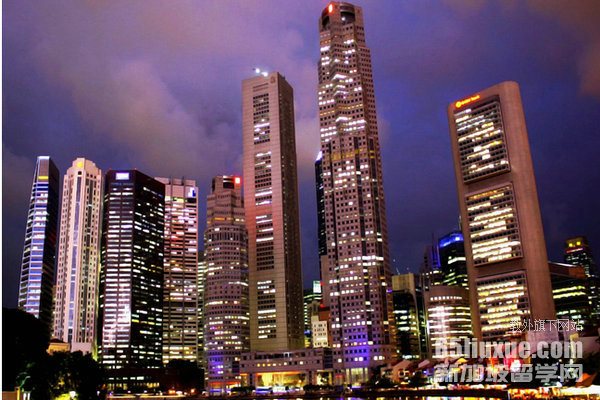 新加坡大学就业的专业
