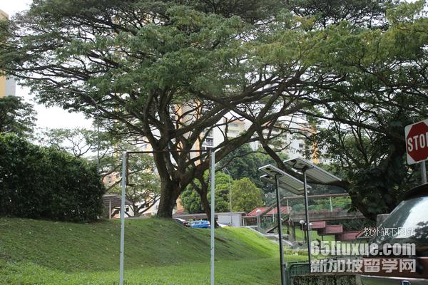 新加坡考雅思难吗