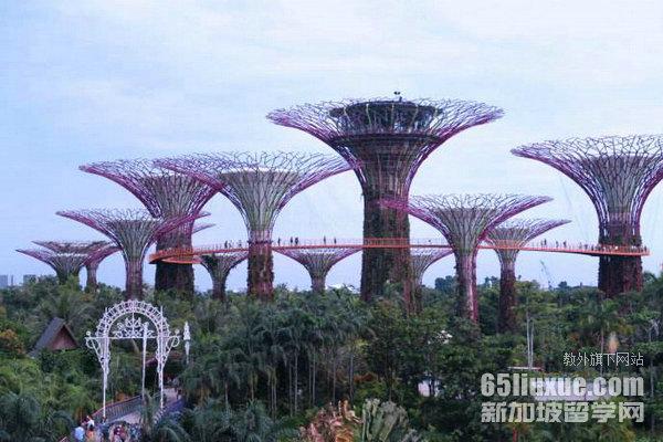 新加坡留学旅游管理专业