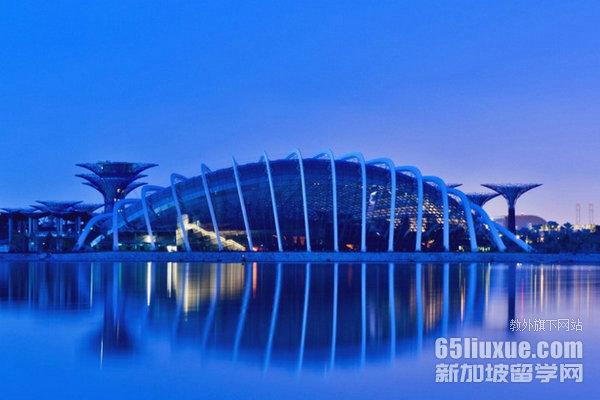 留学新加坡统计专业申请要求