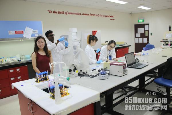 留学新加坡临床医学专业申请攻略